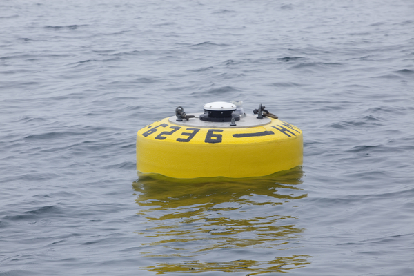 VR_4_Global_Buoy_on_Surface_MG_9210